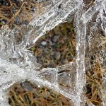 Last ice crystals clinging to life