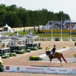 Dressage in Palgrave