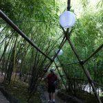 Bamboo gateway.